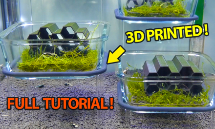 Creating Floating Aquarium Platforms Using 3D Printing – Full Tutorial / Walkthrough (Fusion 360)